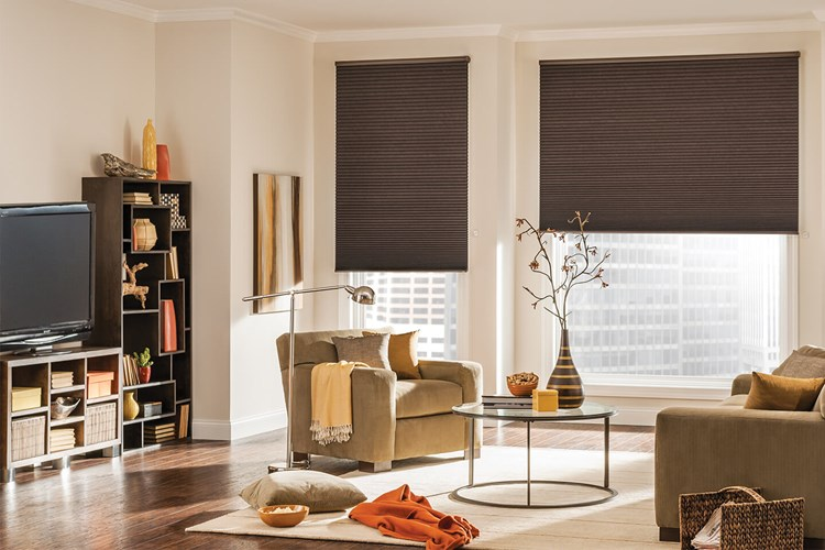 Bali Cellular Shades with AutoView